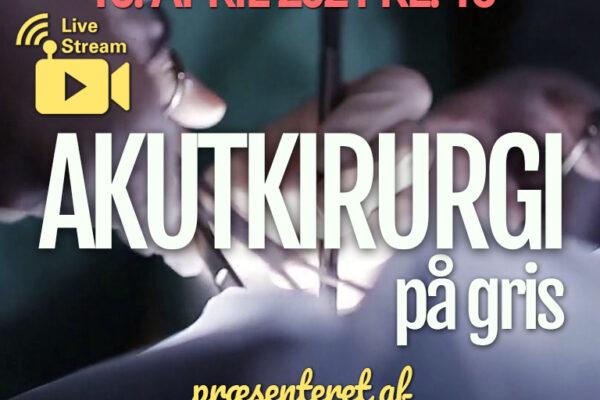 Akutkirurgi på gris | Online årsmøde og generalforsamling